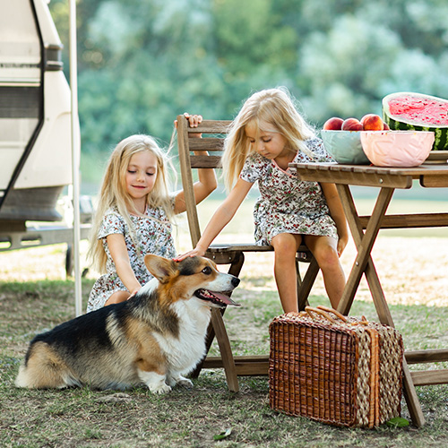 Two young girls sitting outside of an RV petting a small dog.